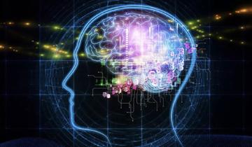뇌 4.jpg