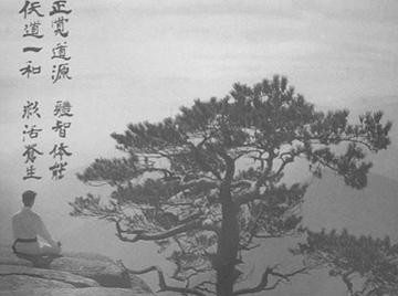 이미지-나무(흑백).JPG