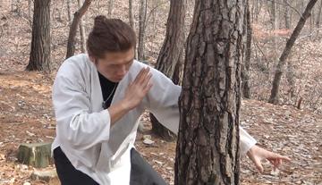 나무치기3.jpg