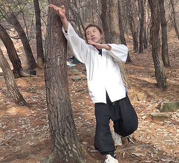나무치기5.jpg