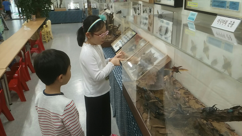 곤충 체험 2.jpg