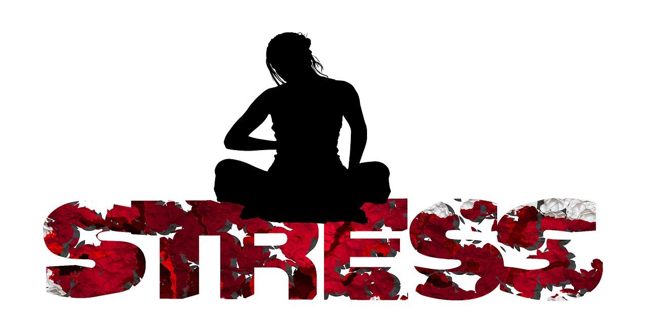 stress-853645_1280.jpg