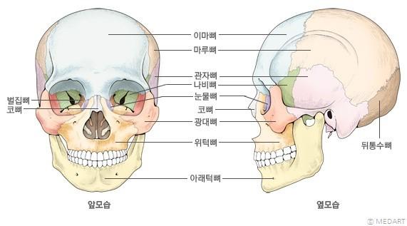 head7.jpg