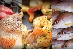 fishcoverphoto240.jpg
