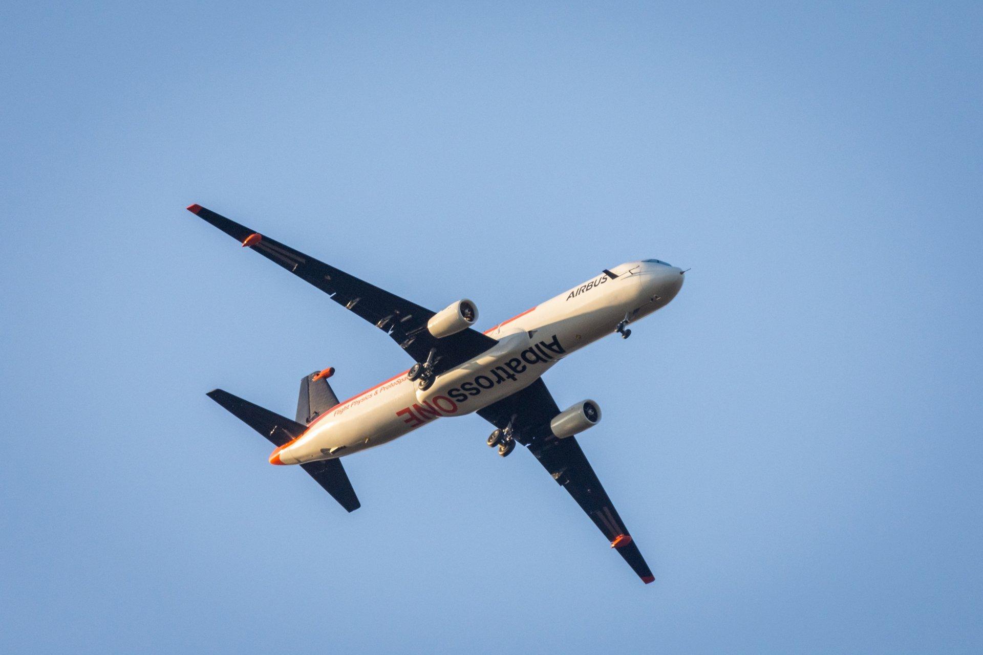 AlbatrossOne-02.jpg