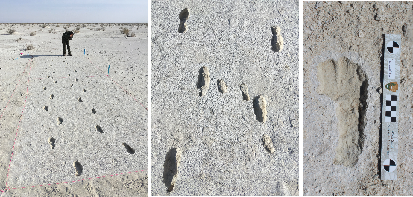 whsa-White-Sands-Human-Footprints-Adult-and-Child.png