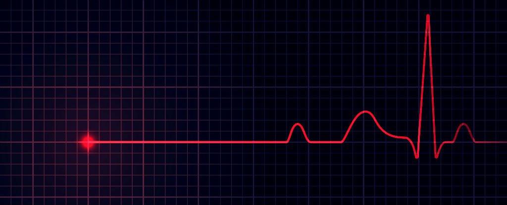 heartbeats_1024.jpg