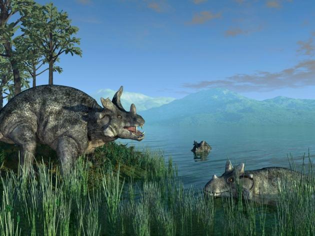 1_14958_C0066082-Estemmenosuchus,_a.jpg