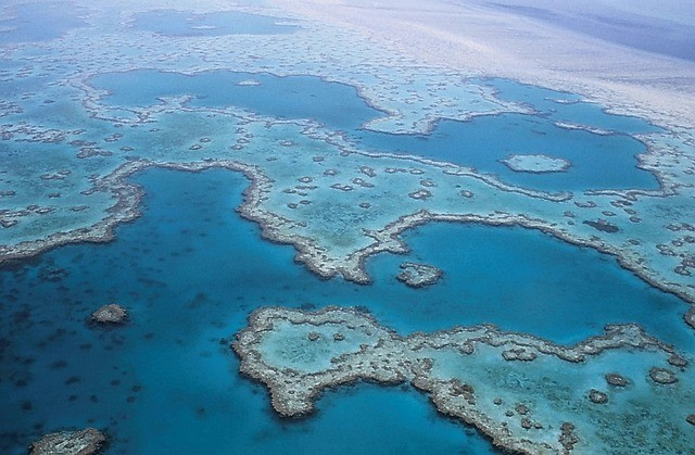 the-great-barrier-reef.jpg