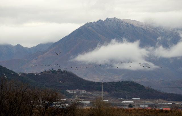 크기변환_dns철원 이길리 에서 바라본 북한의 오성산  아래로 두루미가날고있다SY2_8137.jpg